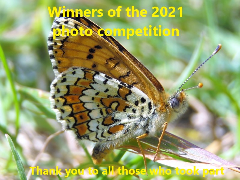 Photo competition 2021 winners